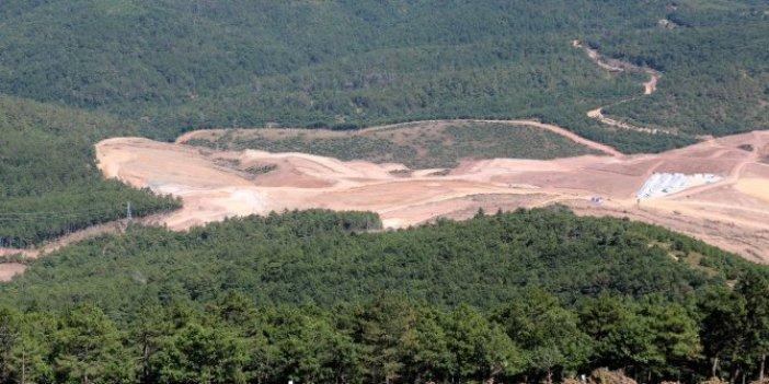 Bakan Kurum, Kaz Dağları'ndaki ağaç katliamı için böyle konuştu!