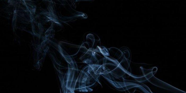 """Sigara en az 14-15 kanser tipi için risk faktörü"""