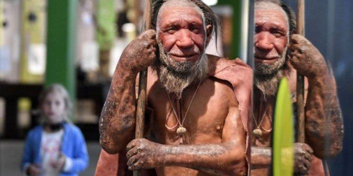 Neandertallerin sonunu 'kötü şansları' mı getirdi?