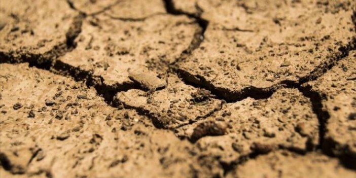 Her yıl 24 milyar ton toprak kaybediliyor
