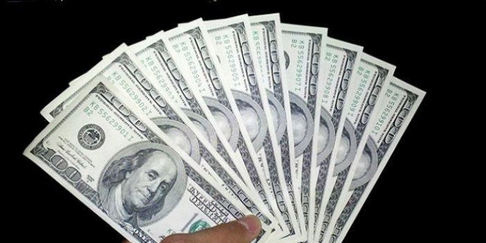Dolar, son iki ayın en yüksek seviyesinde