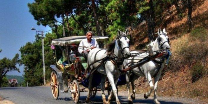 Yerlikaya: Faytonlara at koşulması 3 ay durduruldu