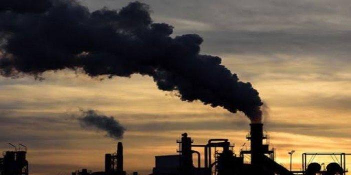 Bilim insanları araştırdı: hava kirliliği kemik erimesi sebebi