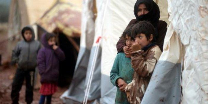 367 bin Suriyeli Türkiye sınırına dayandı!