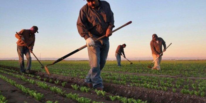 Kredi çiftçiye değil, sermayeye gitti!