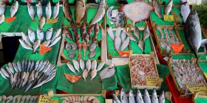 Balık çeşitliliği tehlike altında!