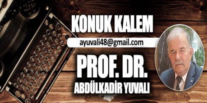 Kültürel değişimde modernleşme-çağdaşlaşma olayı /  Prof. Dr. Abdulkadir Yuvalı
