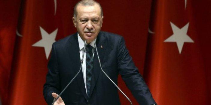 Pelikan grubu harekete geçti: Erdoğan mecbur bırakılacak