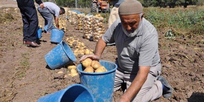 CHP'li Ömer Fethi Gürer: En büyük zulmü çiftçiler görüyor