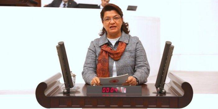 Suzan Şahin: Gazilerin emekli maaşını kesmek aymazlıktır!