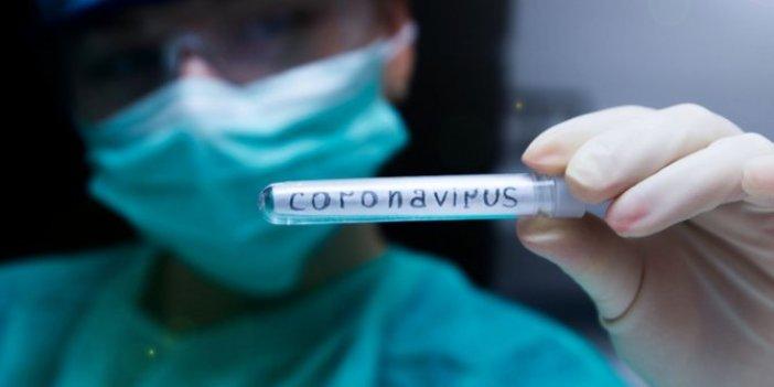 Çin'de neler oluyor: Coronavirüs tehdidinde son durum ne?