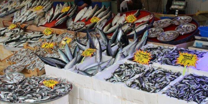 Karadeniz'de balıkçı tezgahları doldu