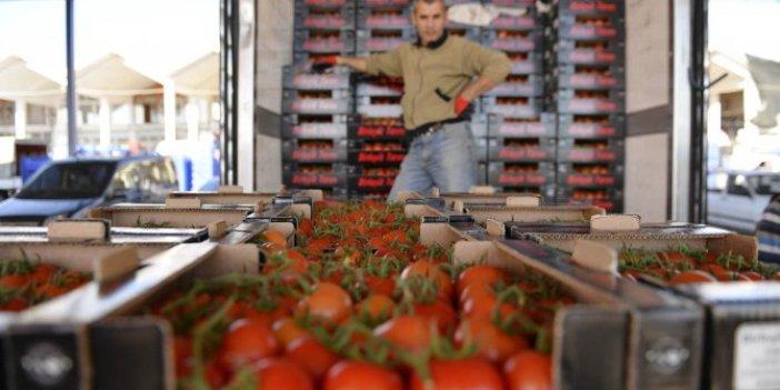 Rusya sınırında bekletilen 5 bin ton domates çöpe mi gidecek?