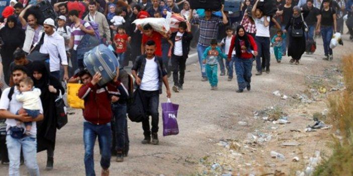 Türkiye'de son 8 yılda 450 bin Suriyeli çocuk doğdu