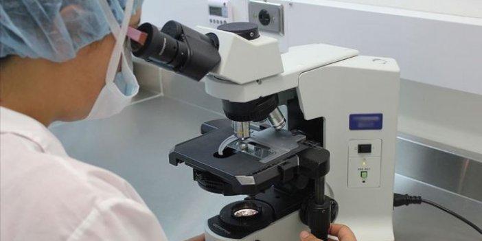 Kanama bozukluklarına karşı 'gen tedavisi'