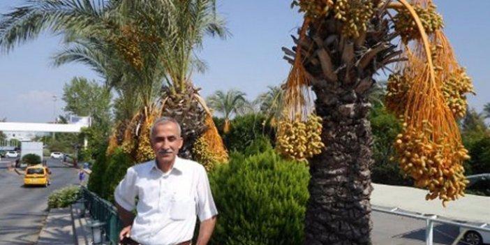 Yasin Öztürk'e Meclis'te saldırmıştı: Said Dağdaş hakkında karar çıktı!