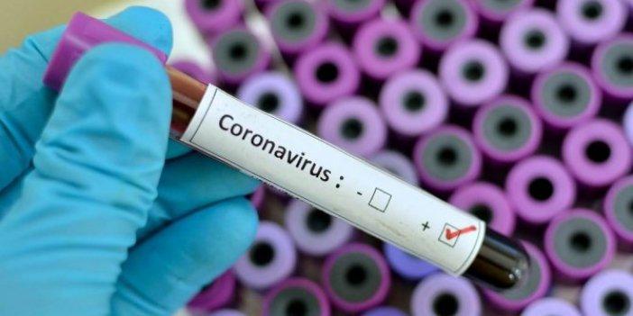 ABD'de korona virüsü için para dağıtılacak