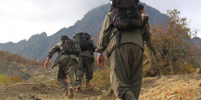 Korona virüs terör örgütü PKK'ya da bulaştı