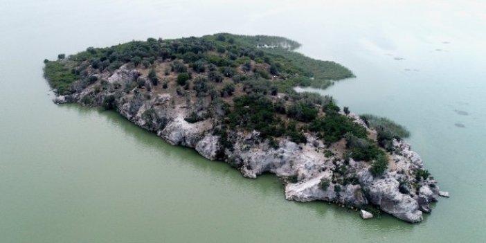 Salgından kaçmak için herkes bu adayı satın almak istiyor!
