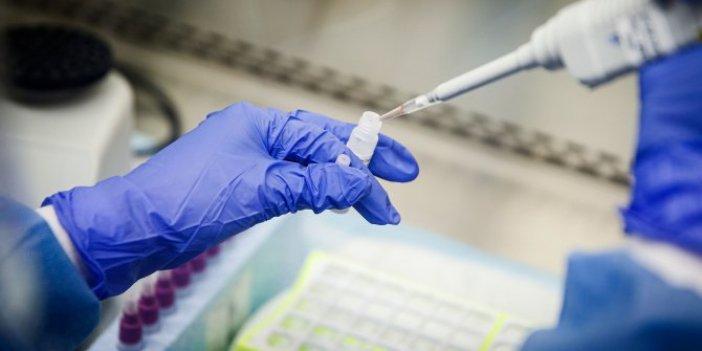 İşte korona virüs aşı çalışmalarında son gelişmeler!