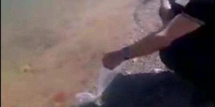 Esrarengiz ABD'linin Beyşehir Gölü'ne bıraktığı balıklar bulunamadı