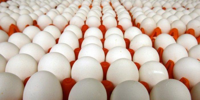 Türkiye'de yumurta üretiminde rekor