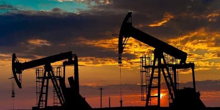 Resmi gazete'de yayımlandı! 7 bölge için petrol hamlesi