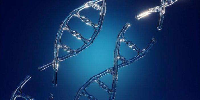 Herkesin bildiği ama kanıtlayamadığı konu: İnsan genleri hakkında çok konuşulacak araştırma