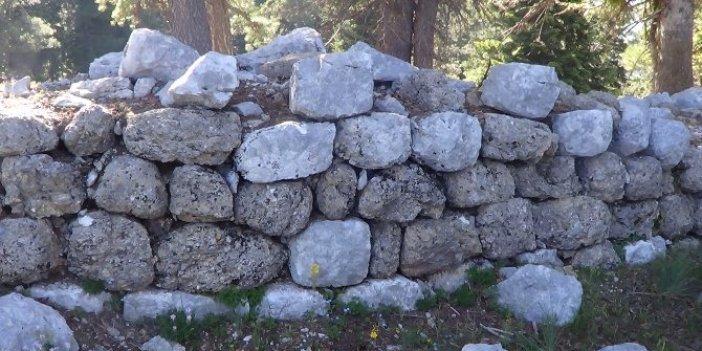 Mantar toplarken 2 bin 800 yıllık tarihi ortaya çıkardı: Çin Seddi gibi