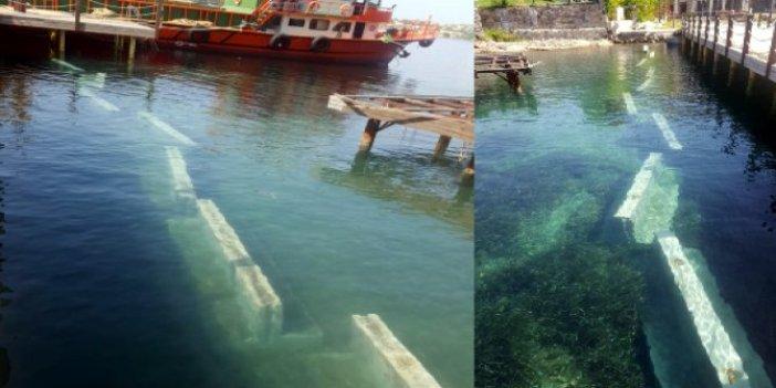 Bodrum'da büyük skandal: Torbalar halinde sahile getirip, bıraktılar