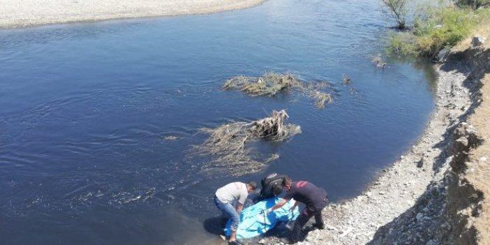 Suyun karşısına geçmek isterken hayatını kaybetti