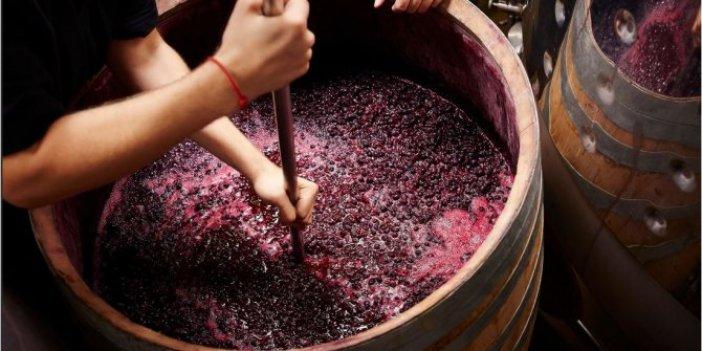 Şaraplar, korona virüs ile mücadelede kullanılacak