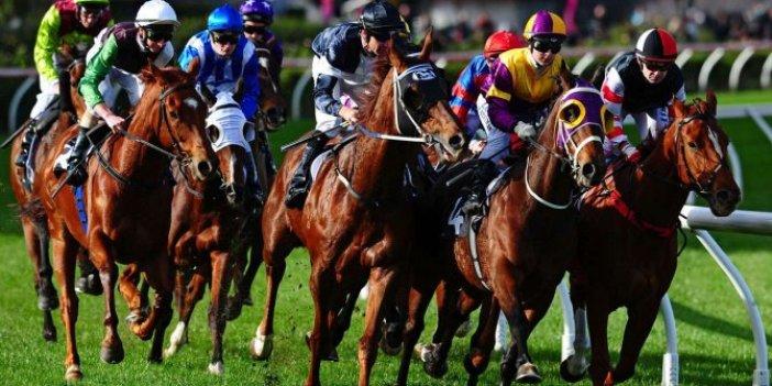 Atlar start hakemiemrine girdi