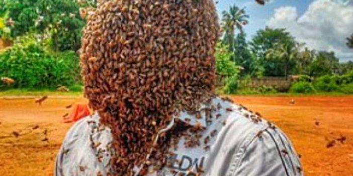 Rekor kırmak için kafasına 60 bin arı topladı