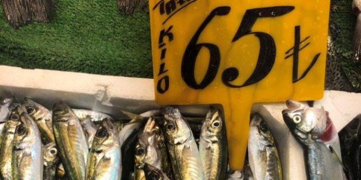 Yuh artık: Denizin kuru fasulyesi istavrite 'pirzola' fiyatı verdiler!