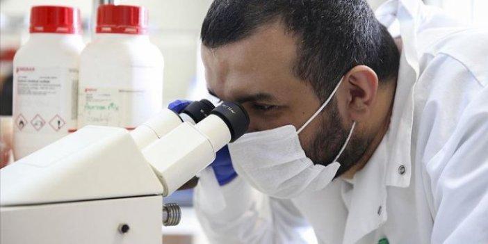 Türk bilim insanları, kanserin çözümünde dev adım attı