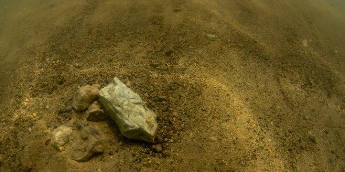 Türkiye'de bulundu: Tam 7,5 milyon öncesine ait