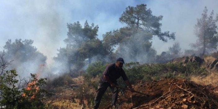 Islahiye'de orman yangını!