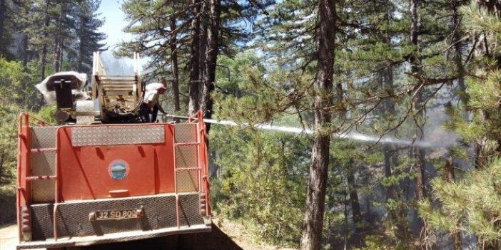 Ciğerlerimiz yanmaya devam ediyor! Isparta'da yine orman yangını