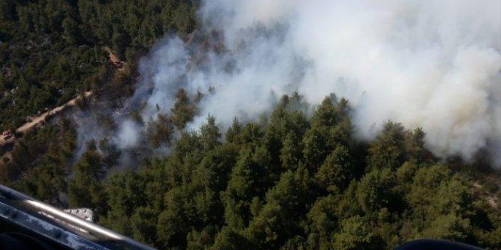 Burdur'daki orman yangınının çıkış nedeni belli oldu