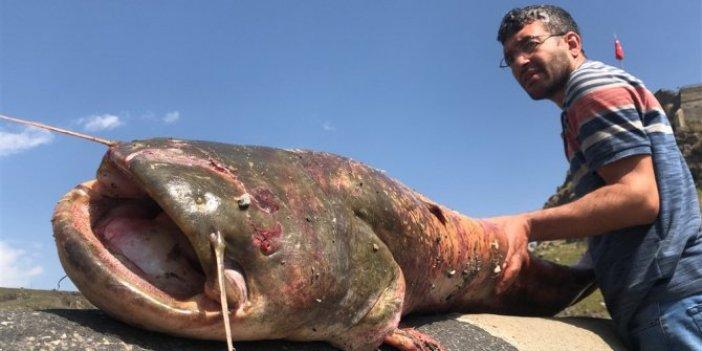 Boylarından uzun balık avladılar