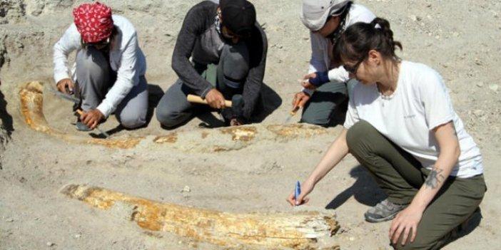 Kayseri'de heyecanlandıran gelişme! 50 metre aralıkla bulundular