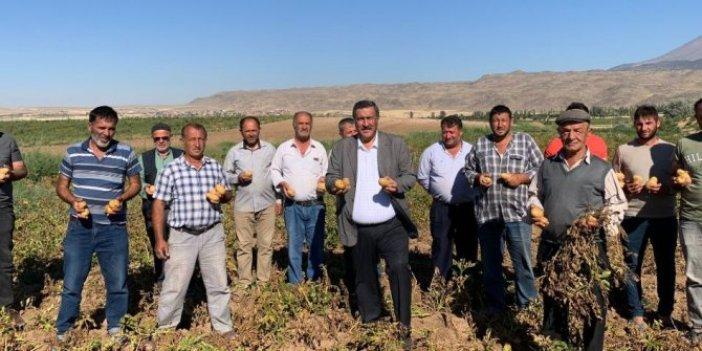 """CHP'li vekil kahreden gerçeği bu sözlerle açıkladı: """"1 ton patates, 1 çeyrek altın etmiyor"""""""
