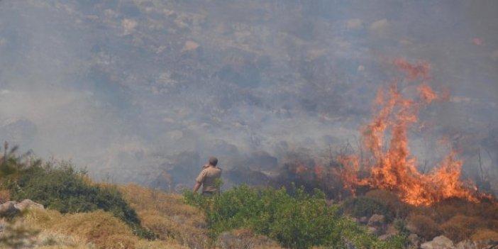 Ciğerlerimiz yanıyor! Aydın ve İzmir'de 4 orman yangını