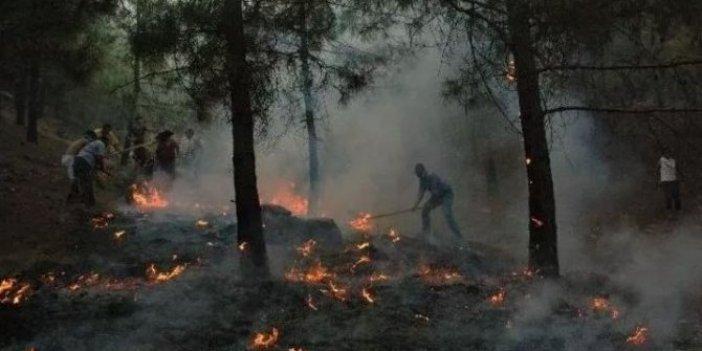 """Yangına avuç avuç toprak taşıyan Suriyeliyi medyamız """"kahraman"""" ilan etti: Orman yangınını söndürürken canından olan muhtarın adını kimse duymadı"""