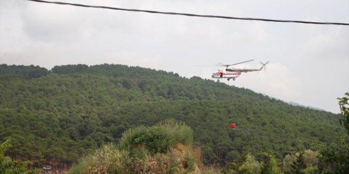 İstanbul'da Aydos ormanında yangın