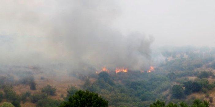 Bulgaristan-Türkiye sınırında yangın sürüyor