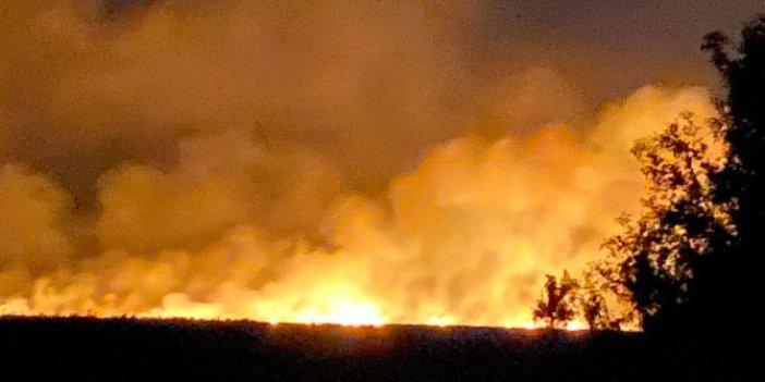 Terme'deki orman yangınında korkutan görüntüler! 12 saattir ciğerlerimiz yanıyor
