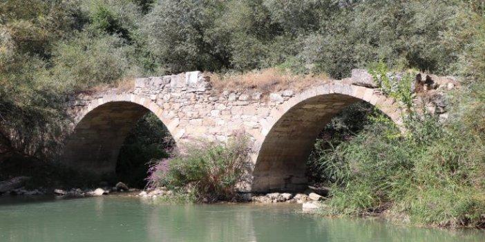 Define avcıları bu köprüye akın ediyor! Sağında ya da solunda bir teneke altın