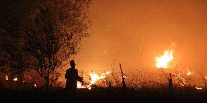 Çeşme'de yangın! 4 site boşaltıldı